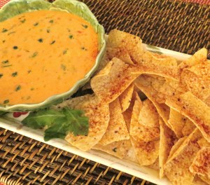 Warm and Spicy Dip for Tortilla Chips - My Yellow Farmhouse.com
