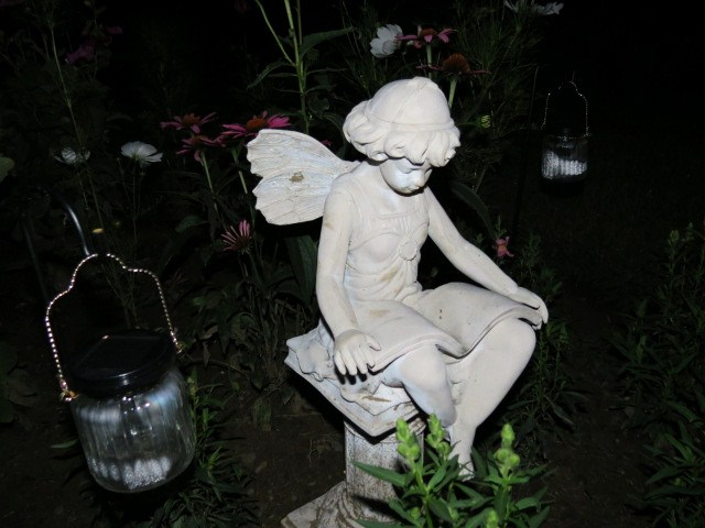 Night Garden - Aug. 2, 2014 018