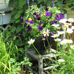 Antique Chair and Flowers - August 2015 - My Yellow Farmhouse.com