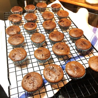 4-mini-chocolate-halloween-cupcakes-with-reeses-candy-centers