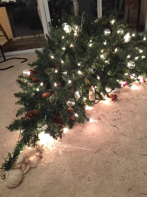 EPIC TREE FAIL !